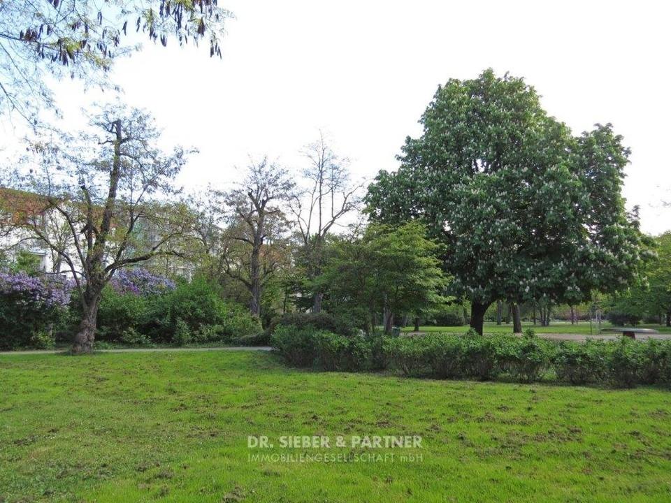 Stadtteilpark