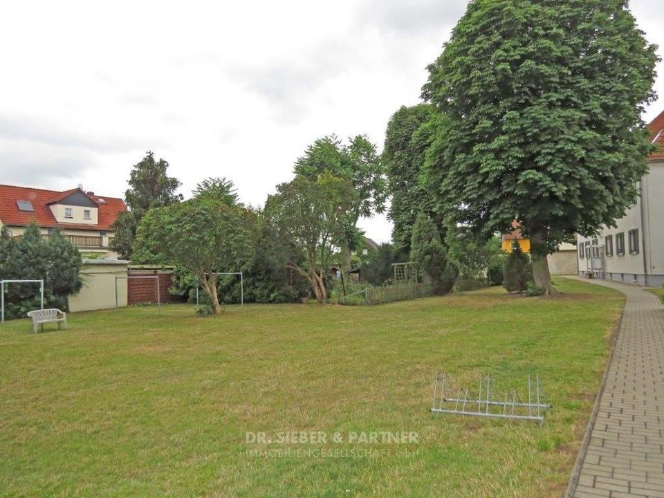 Grüne Freiflächen