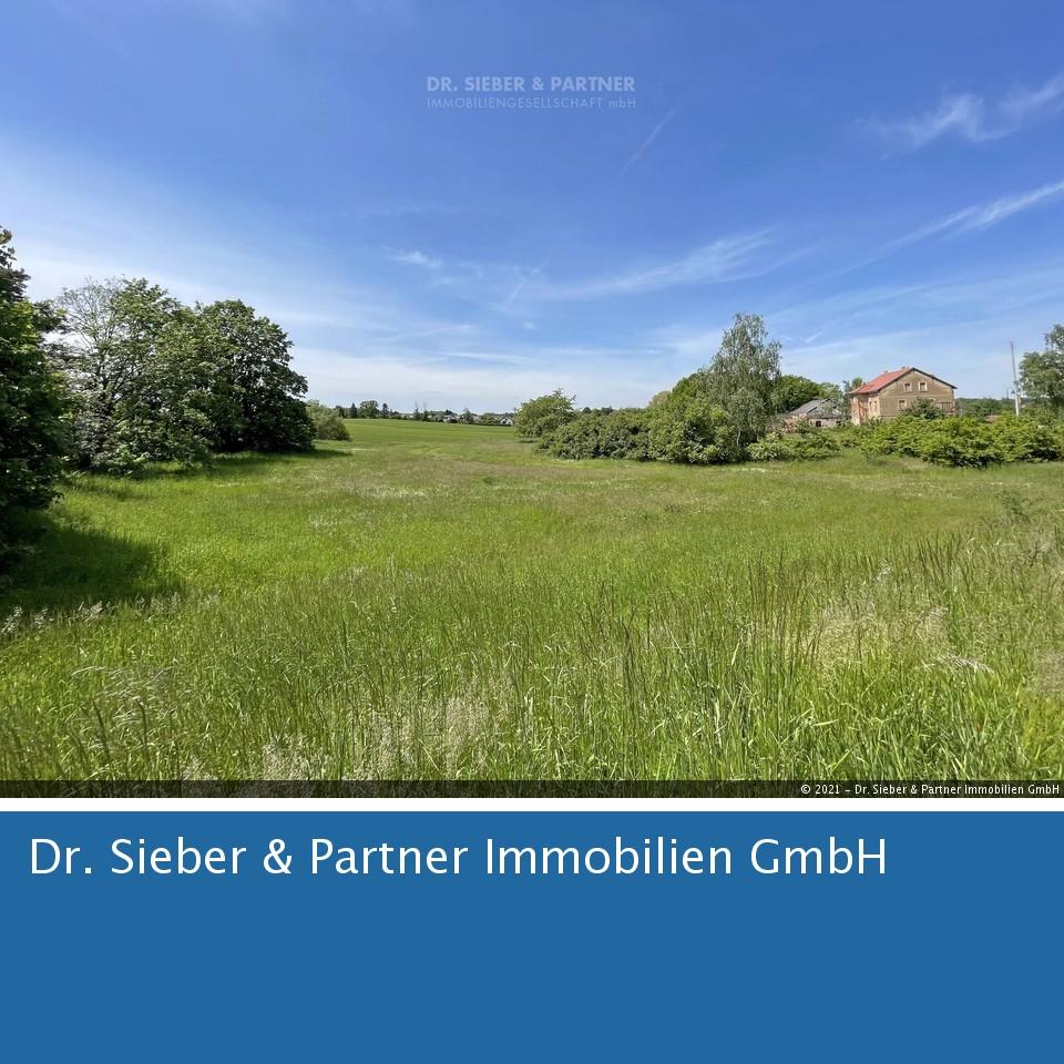 Grimma - Positiver Bauvorbescheid für Neubau RH oder DHH und MFH * Großes Baugrundstück bei Grimma